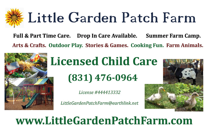 little garden patch farm see additional scenes from around the farm